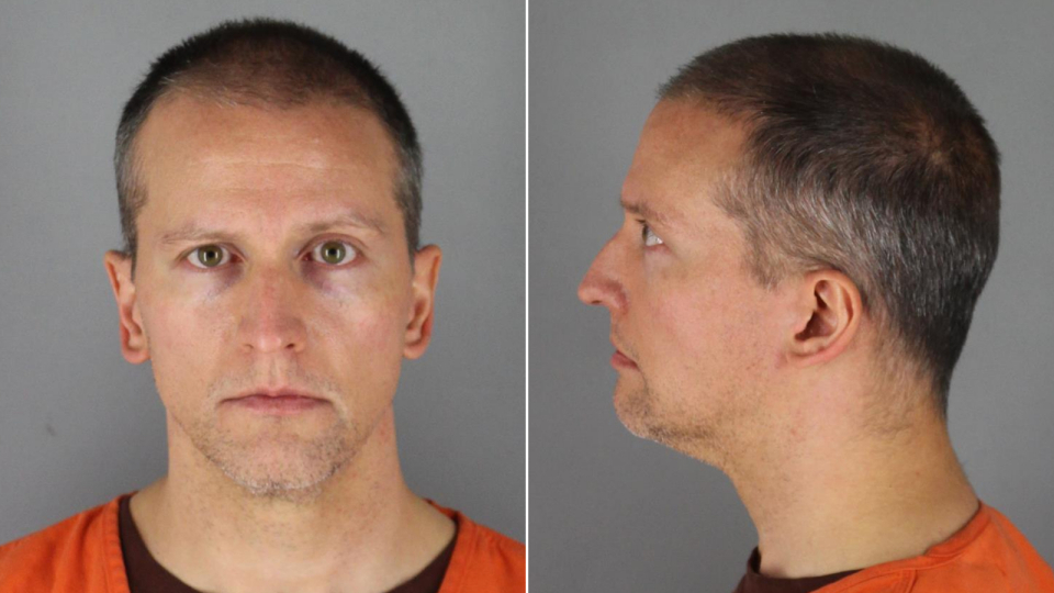 Derek Chauvin (Credit: Hennepin County Sheriff's Office)