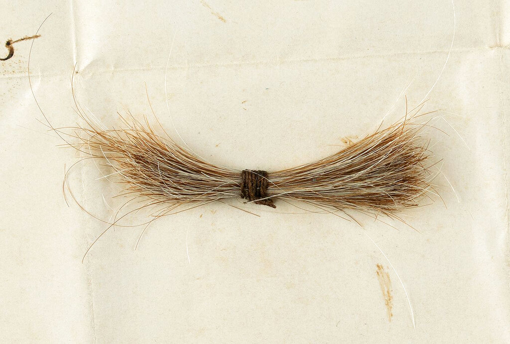 This photo released by RR Auction shows a lock of hair from former President Abraham Lincoln to be auctioned on Sept. 12 by the Boston-based auction firm. The lock of hair was removed during Lincoln's postmortem examination in April 1865 after he was fatally shot by John Wilkes Booth at Ford's Theatre in Washington. (Nikki Brickett/RR Auction via AP)