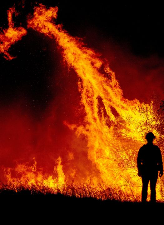 A firefighter watches flames ignite a tree at the Bear fire in Oroville, California on September 9, 2020. Dangerous dry winds whipped up California's record-breaking wildfires and ignited new blazes, as hundreds were evacuated by helicopter and tens of thousands were plunged into darkness by power outages across the western United States. (Photo by JOSH EDELSON/AFP via Getty Images)
