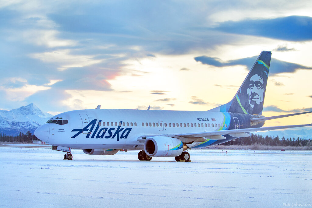 This photo provided by R E Johnson shows an Alaska Airlines jet that struck a brown bear while landing in the early evening the day before, killing the animal and causing damage to the plane, at Yakutat Airport in Yakutat, Alaska. The left engine cowling of the jet was damaged. The Anchorage Daily News reports none of the passengers or crew members onboard the plane were injured. (R E Johnson via AP)