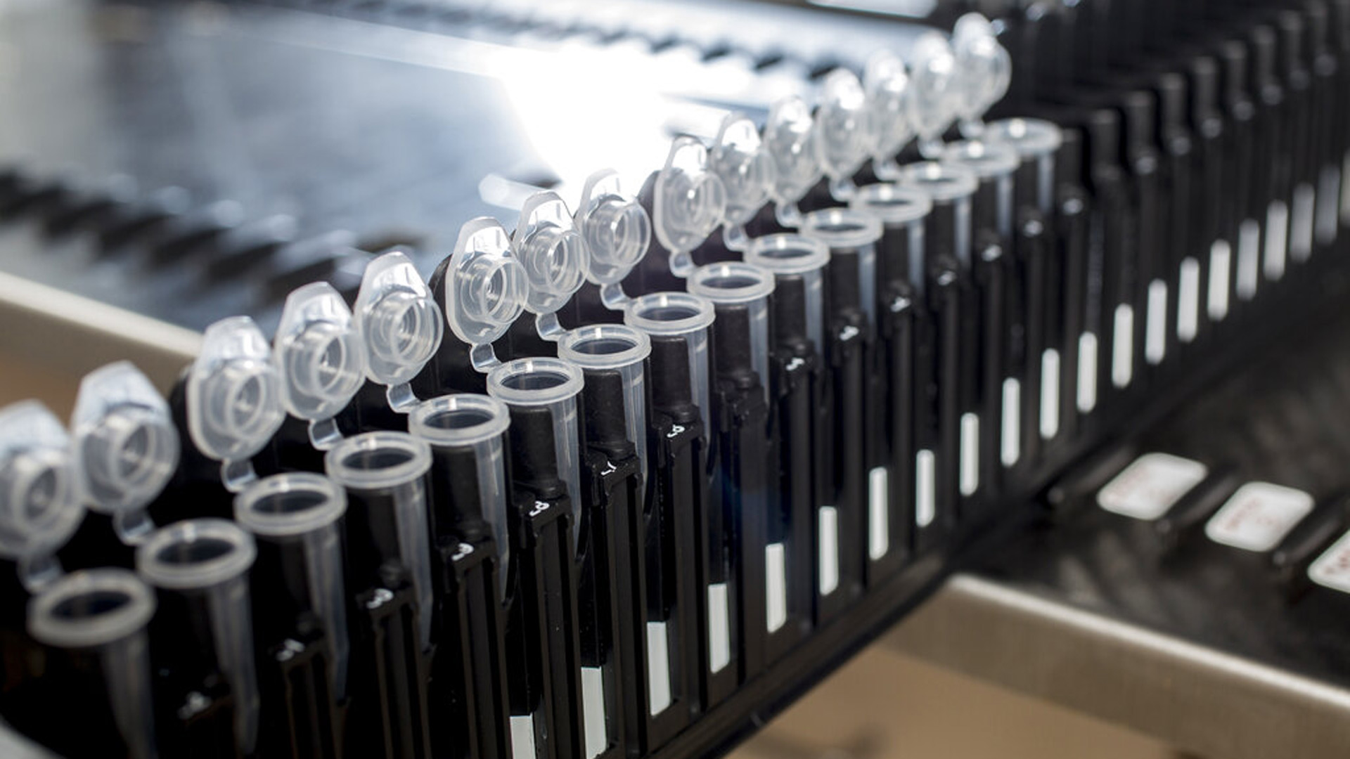 Blood sample lab