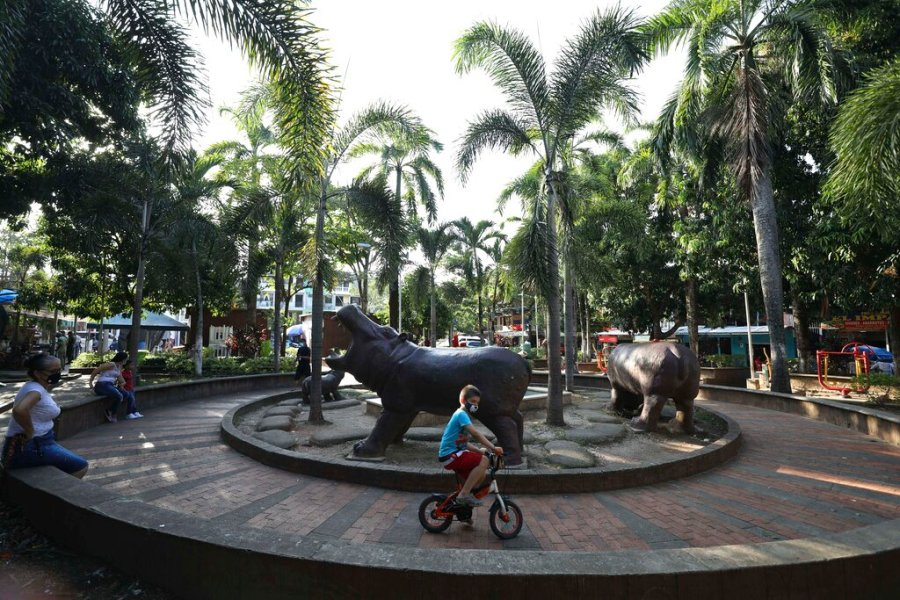 A boy rides his bicycle in a park decorated with hippo statues in Doradal, Colombia. (AP Photo/Fernando Vergara)