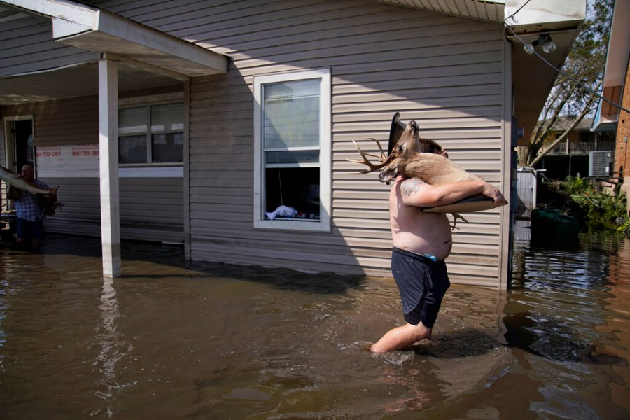 Josh Montford carries taxidermy deer heads from his flood damaged home in the aftermath of Hurricane Ida in Jean Lafitte, La. (AP Photo/John Locher)