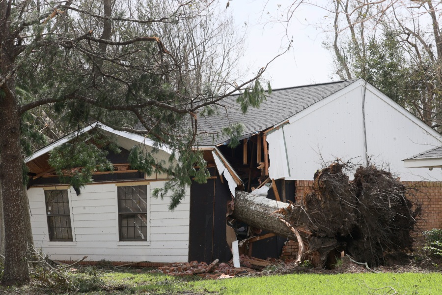 A tree rests inside a home after falling during Hurricane Ida in Houma, Louisiana. (Photo by Scott Olson/Getty Images)