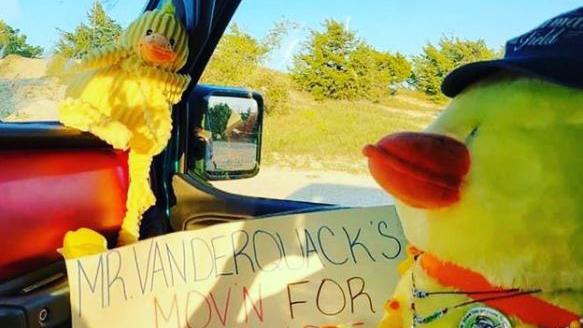 Duck journey